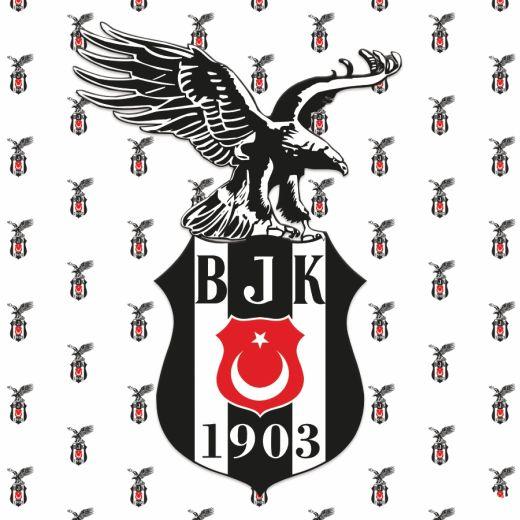 Beşiktaş Desenli Baskılı Zebra Perde